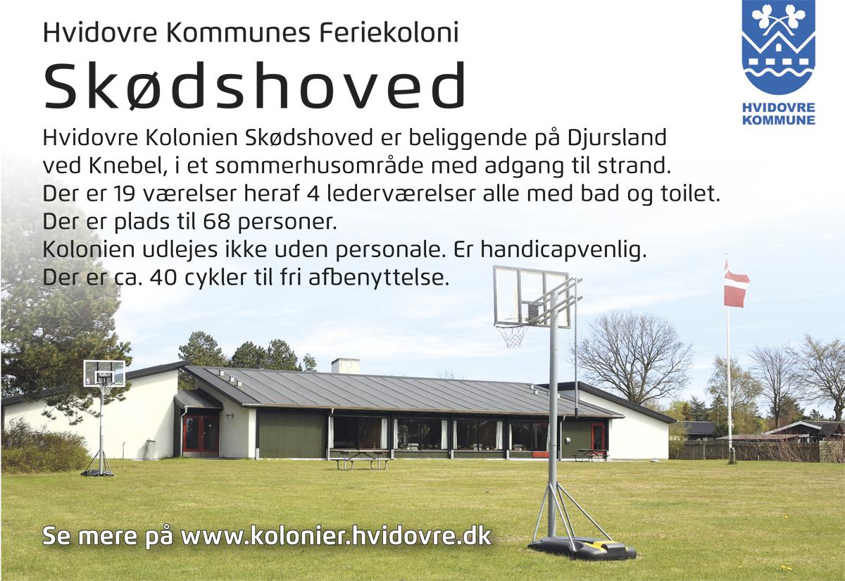 hvidovre kommune hjemmeside