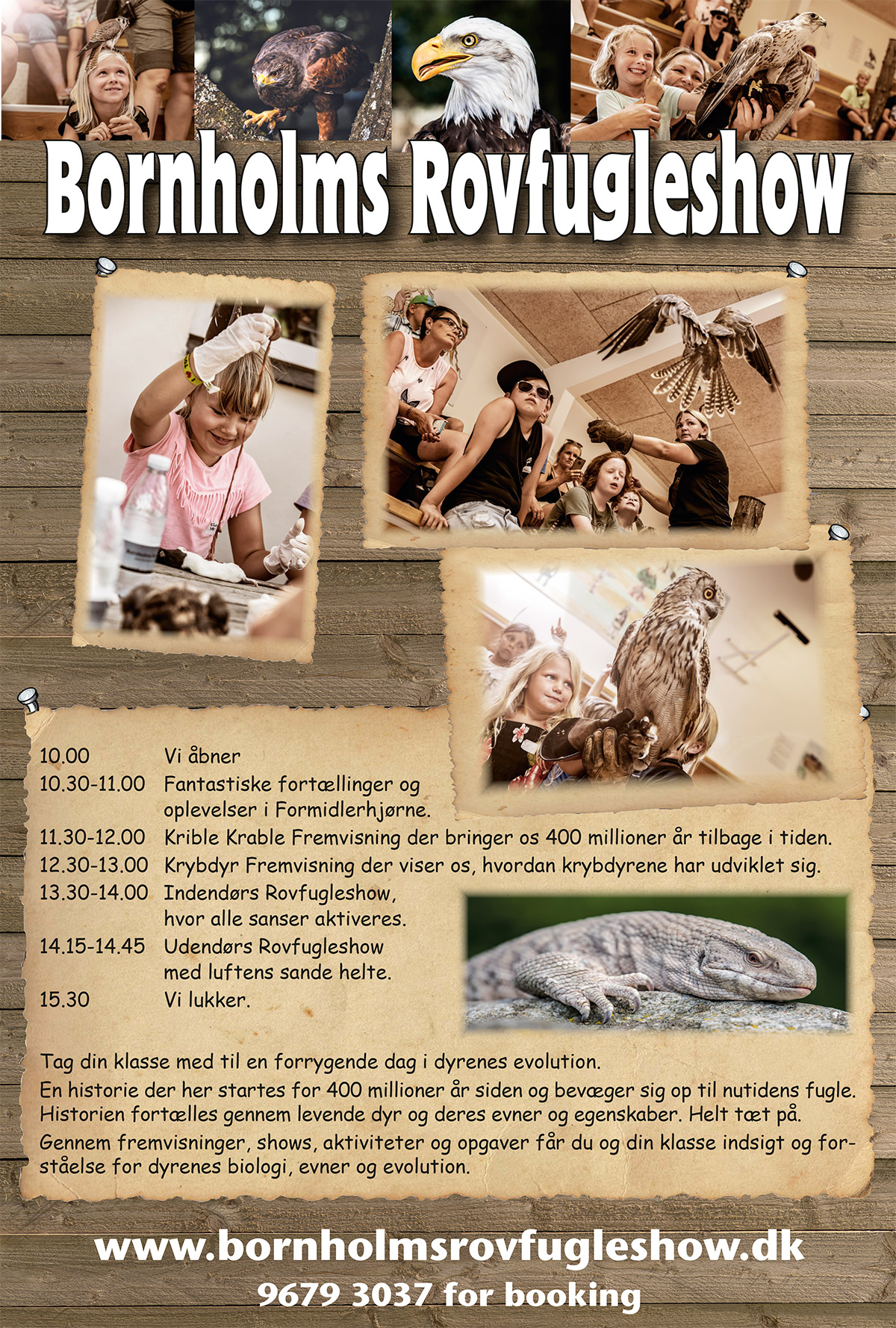 Bornh-Rovfugleshow-2020
